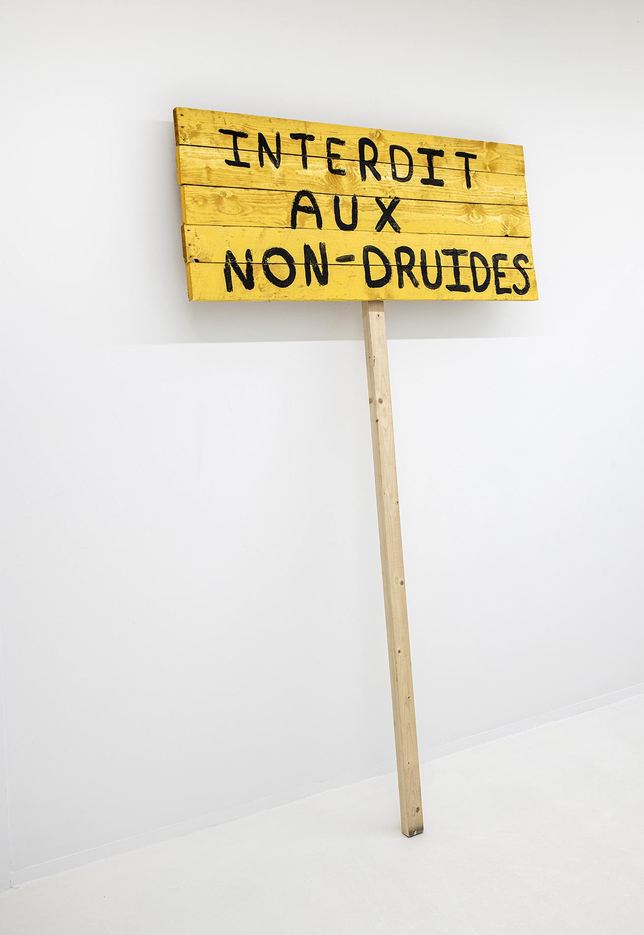 Idris Sevenans | Interdit aux non-druides 2020