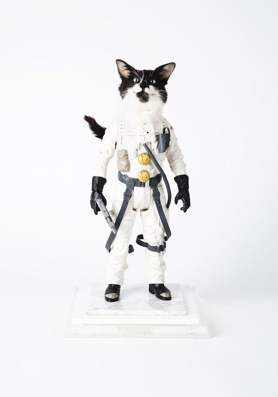 Les Deux Garçons | le neveu du chat botté 2019