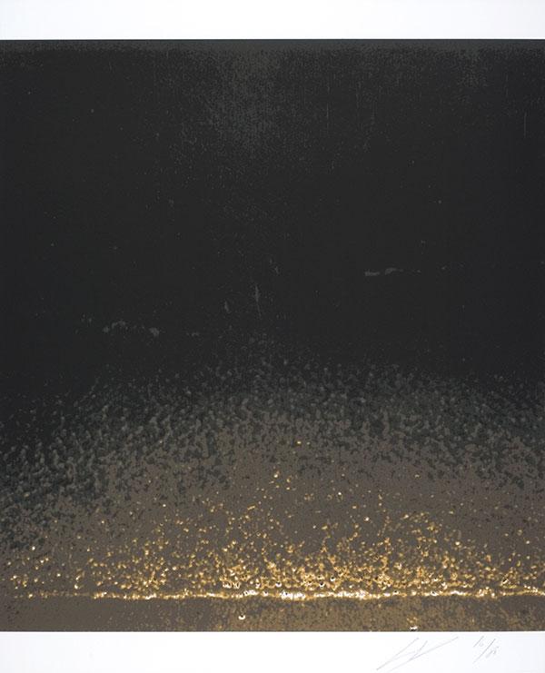 Luc Tuymans | Shore 2005