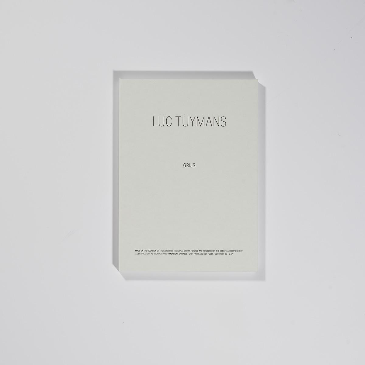 Luc Tuymans | Grijs 2016