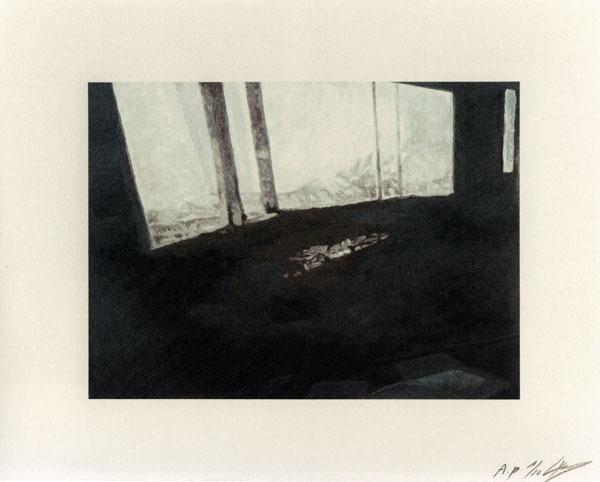 Luc Tuymans | Fenêtre 2012